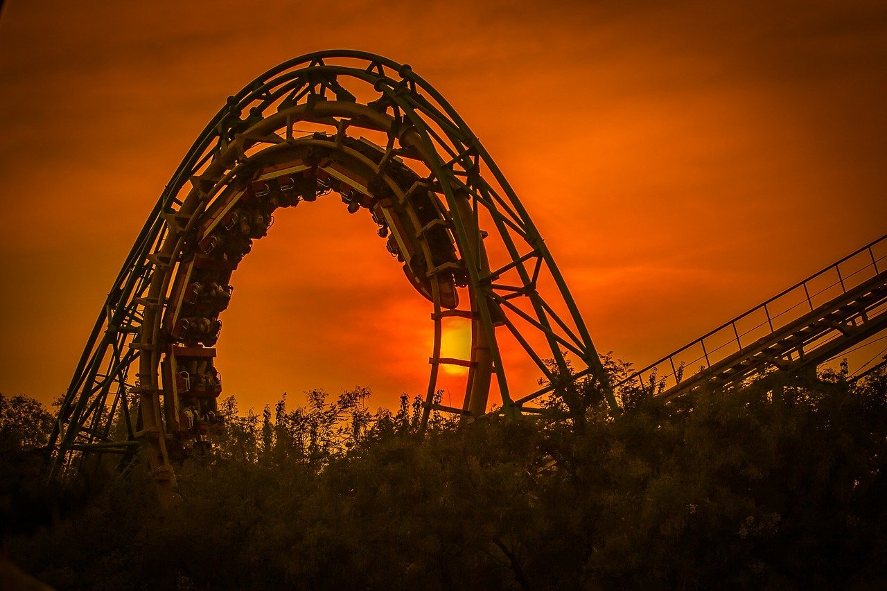 did you ride the roller coaster? - the cfo agency